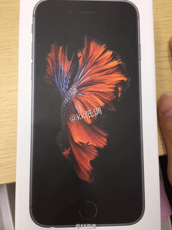 Alleged-iPhone-6s-box