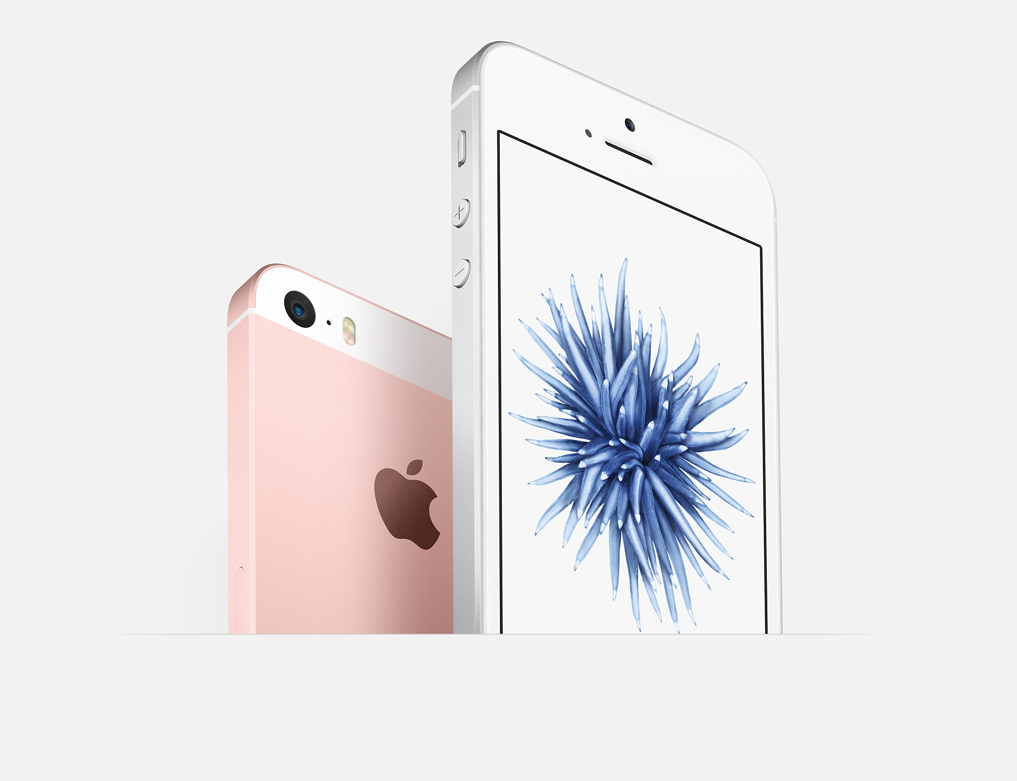 Apple-iPhone-SE---the-official-images-gallery (3)